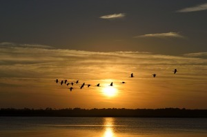 sunset-1794369_640