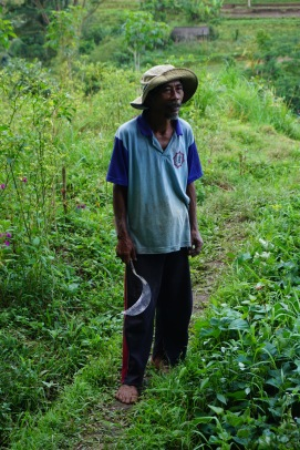 "Hans "" They were forced to leave and make up for bigger cities to survive"", rice farmer "" It gets harder and harder to cultivate rice today. Typhoons are more intense than they used to be and when they hit, most crops are lost forever. I know many men here in the fields who gave up on trying. They were forced to leave and make up for bigger cities to survive. Mostly men. It's always hard to leave your home and family, you know. Some of my friends left. My brother also. He rarely comes back home."""